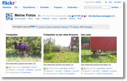 flickr auf deutsch