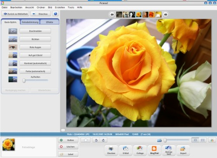 Picasa in Aktion